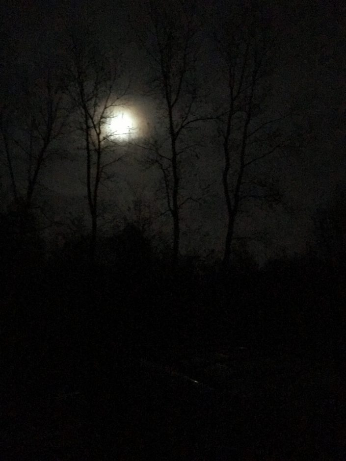 Witches and a full moon